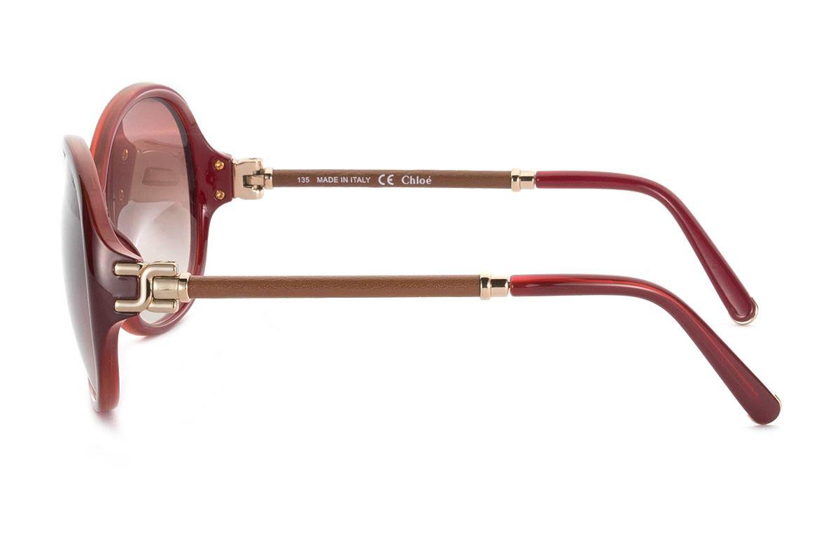 Chloé 高質感太陽眼鏡 CE639SL-6033