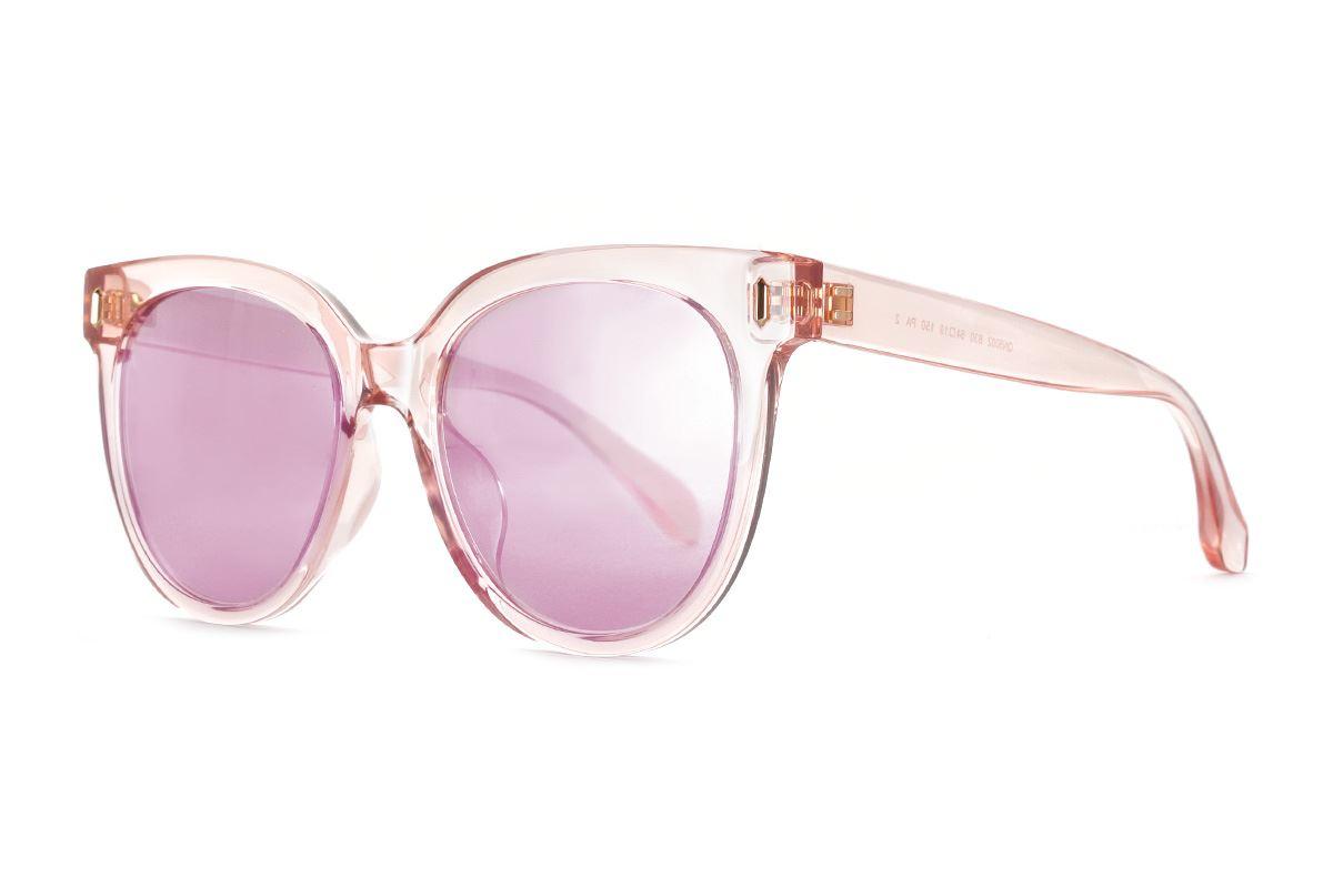 嚴選淺水銀太陽眼鏡 FN50021