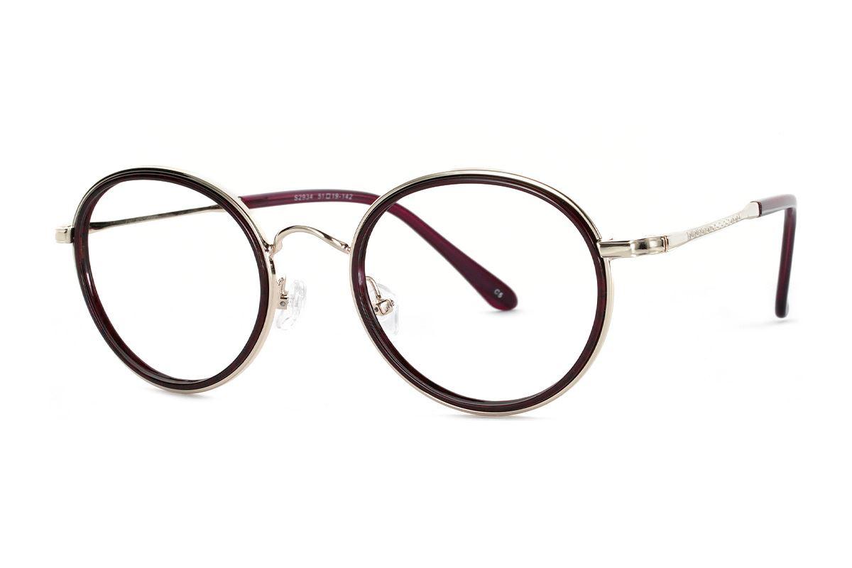 嚴選復古質感眼鏡 FS2934-C51