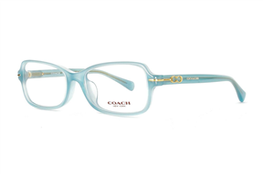 Glasses-Coach HC6055-5252