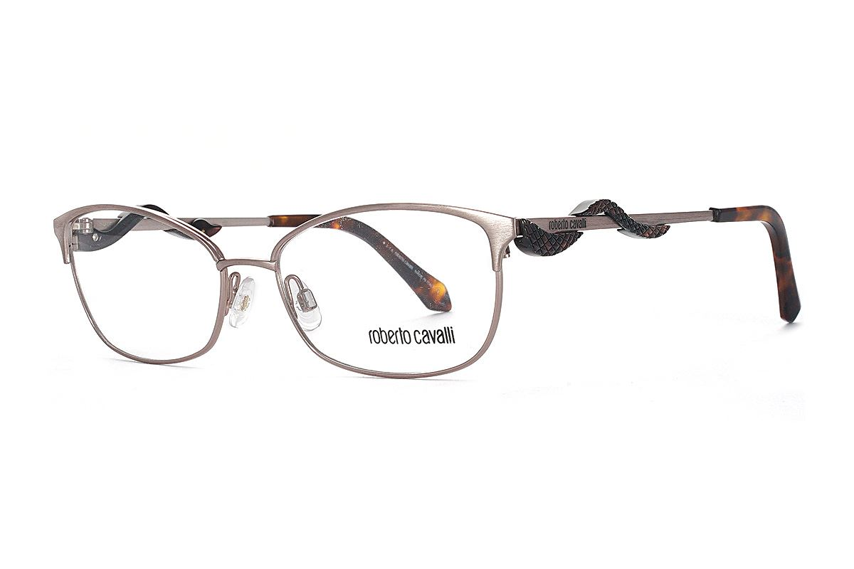 Roberto Cavalli 眼鏡 RC5006-072 1