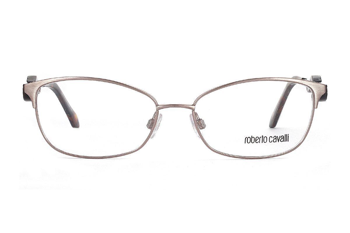 Roberto Cavalli 眼镜 RC5006-072 2