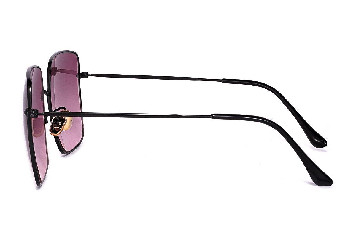 浅色造型太阳眼镜 F2108-R3