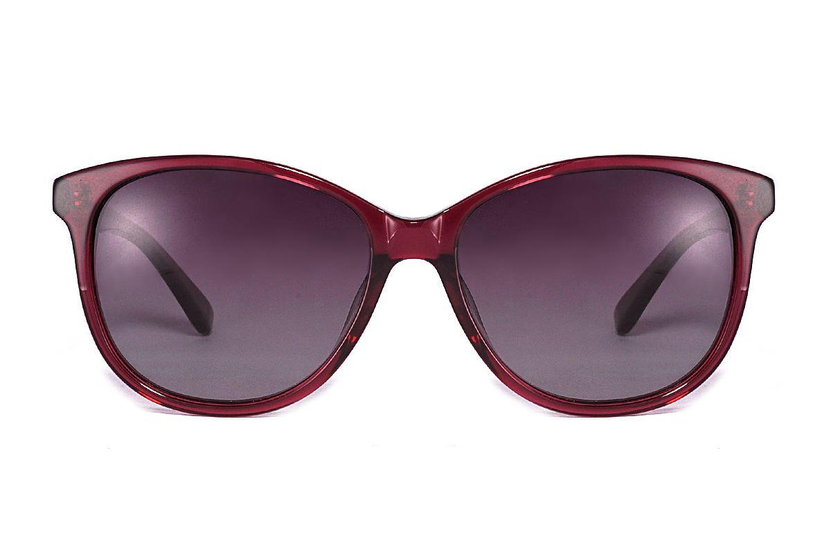 偏光太陽眼鏡 FS31612-LXC2
