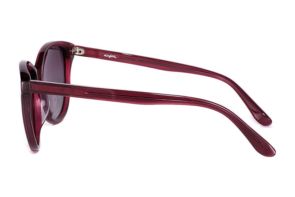 偏光太陽眼鏡 FS31612-LXC3