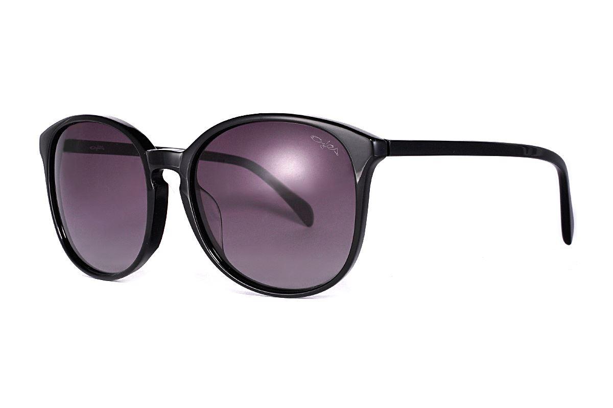 偏光太陽眼鏡 FS31661-LXC1