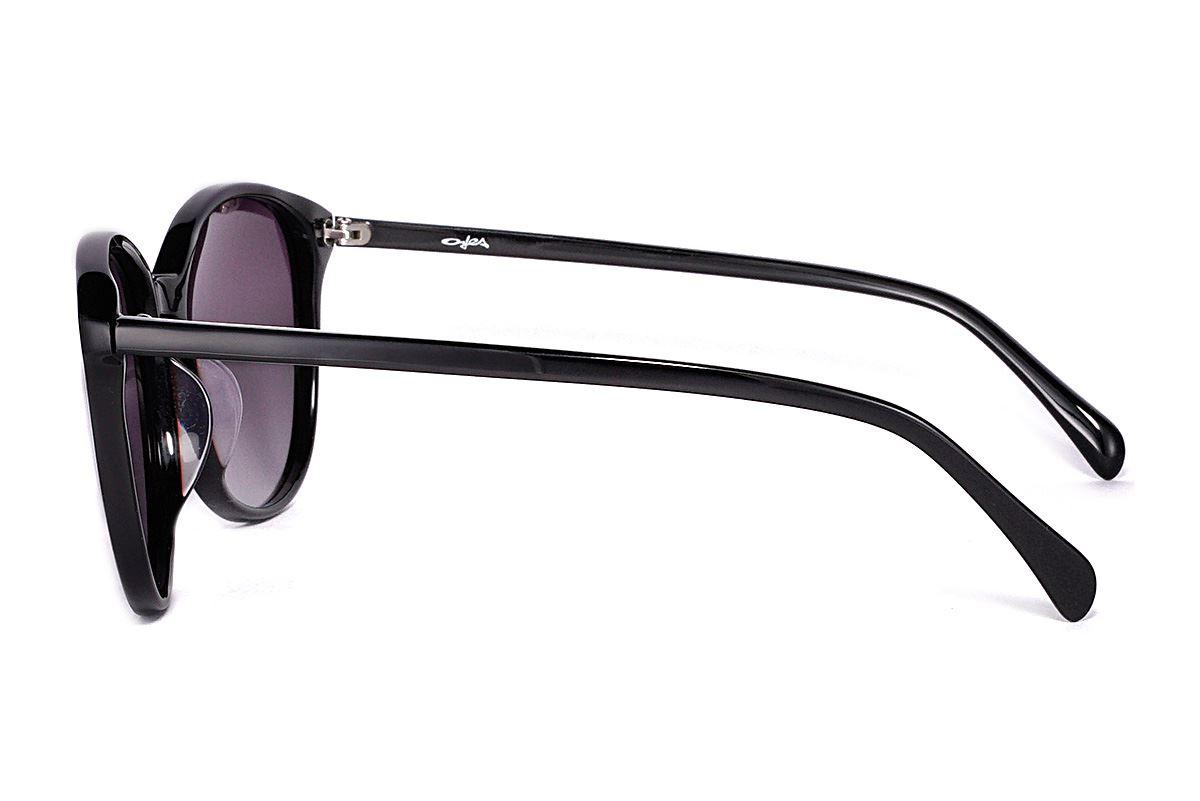 偏光太陽眼鏡 FS31661-LXC3
