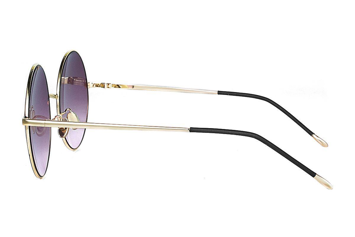复古造型太阳眼镜 3078-C13