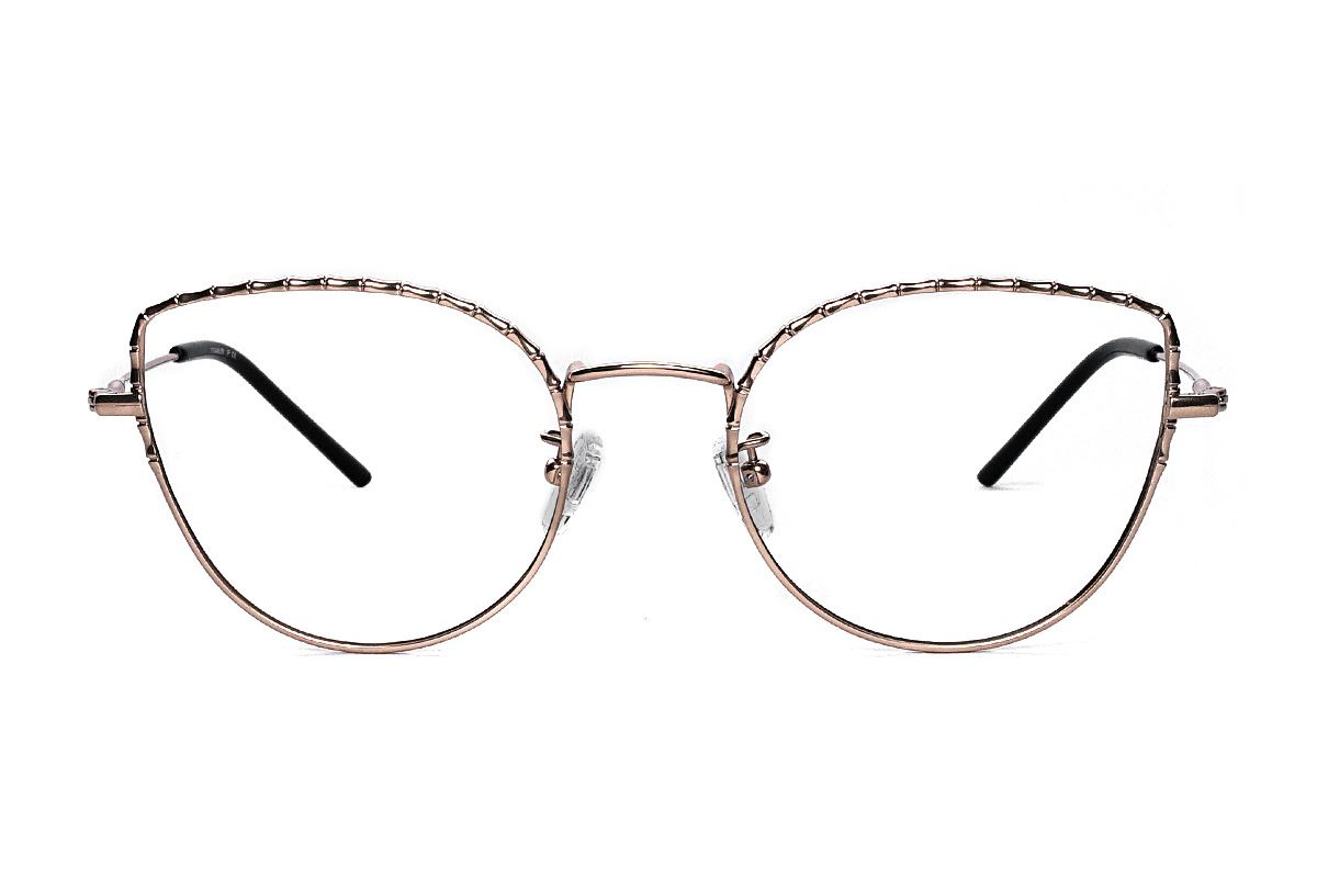 嚴選高質感鈦眼鏡 H6611-C42