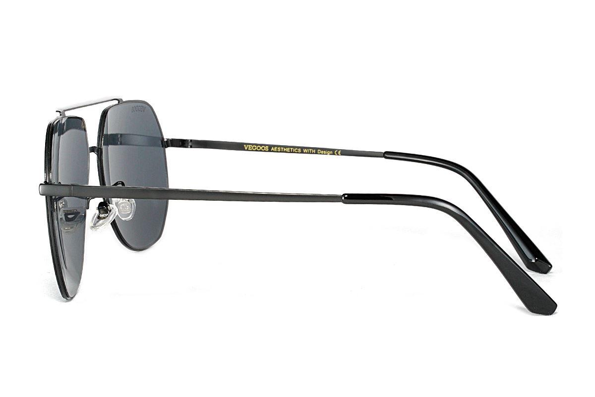 偏光太陽眼鏡 3181-C13