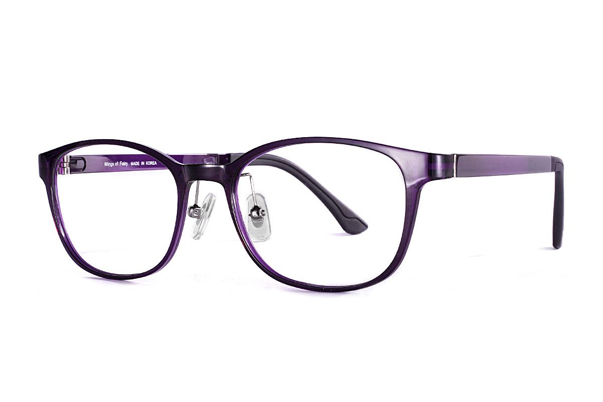 严选韩制塑钢眼镜 J317-C31