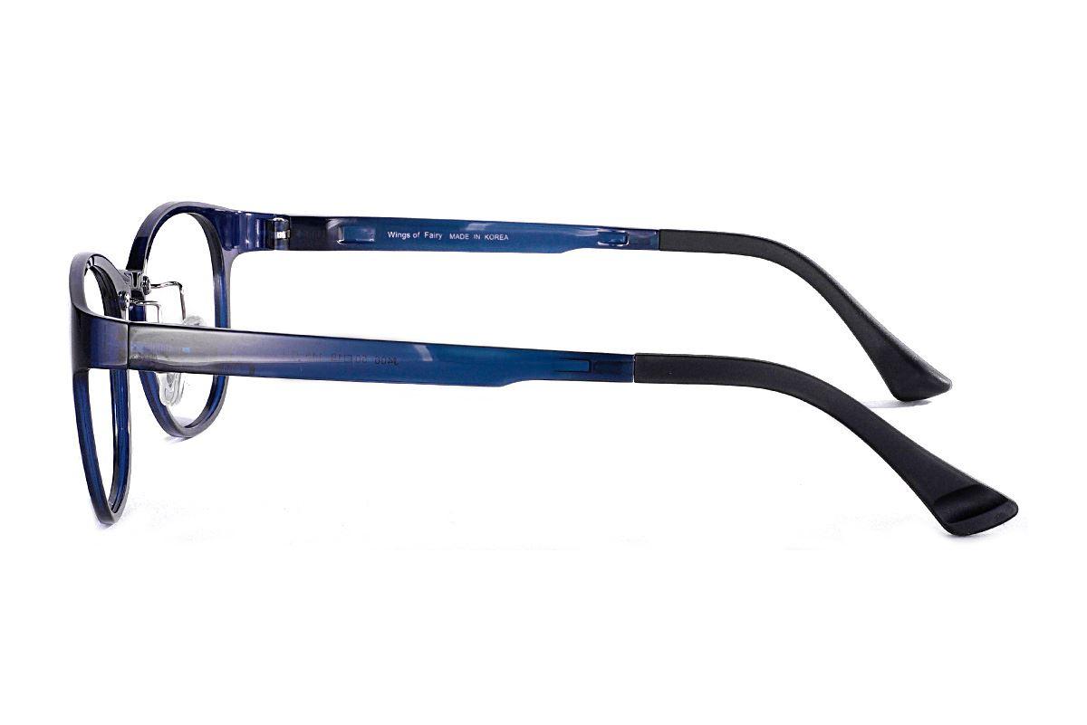 嚴選韓製塑鋼眼鏡  J406-C43