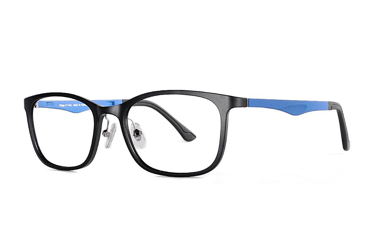 嚴選韓製塑鋼眼鏡 J315-C31