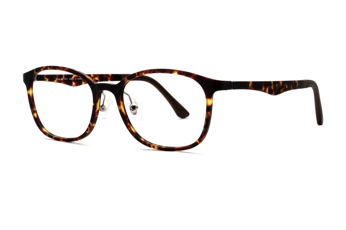 嚴選韓製塑鋼眼鏡  J311-C61
