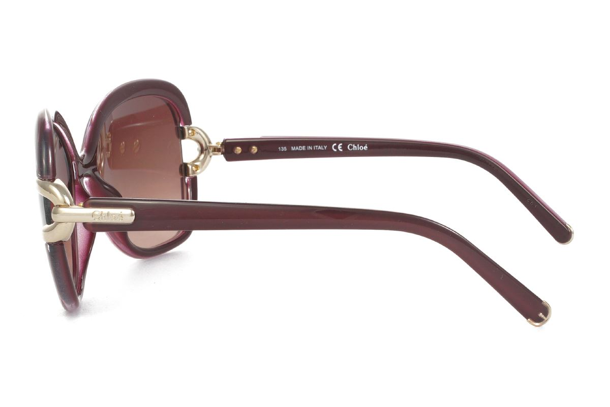 Chloé 高質感太陽眼鏡 CE637S-5053