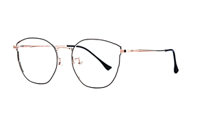 Glasses-Select L8611-C5