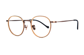 Glasses-Select 5501-C4