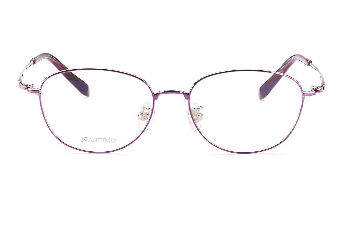 嚴選高質感鈦鏡框 F2299-PI2