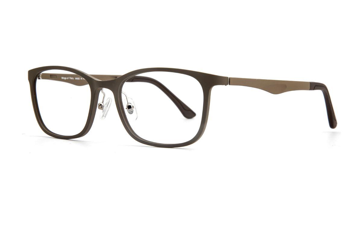 嚴選韓製塑鋼眼鏡 J315-C41