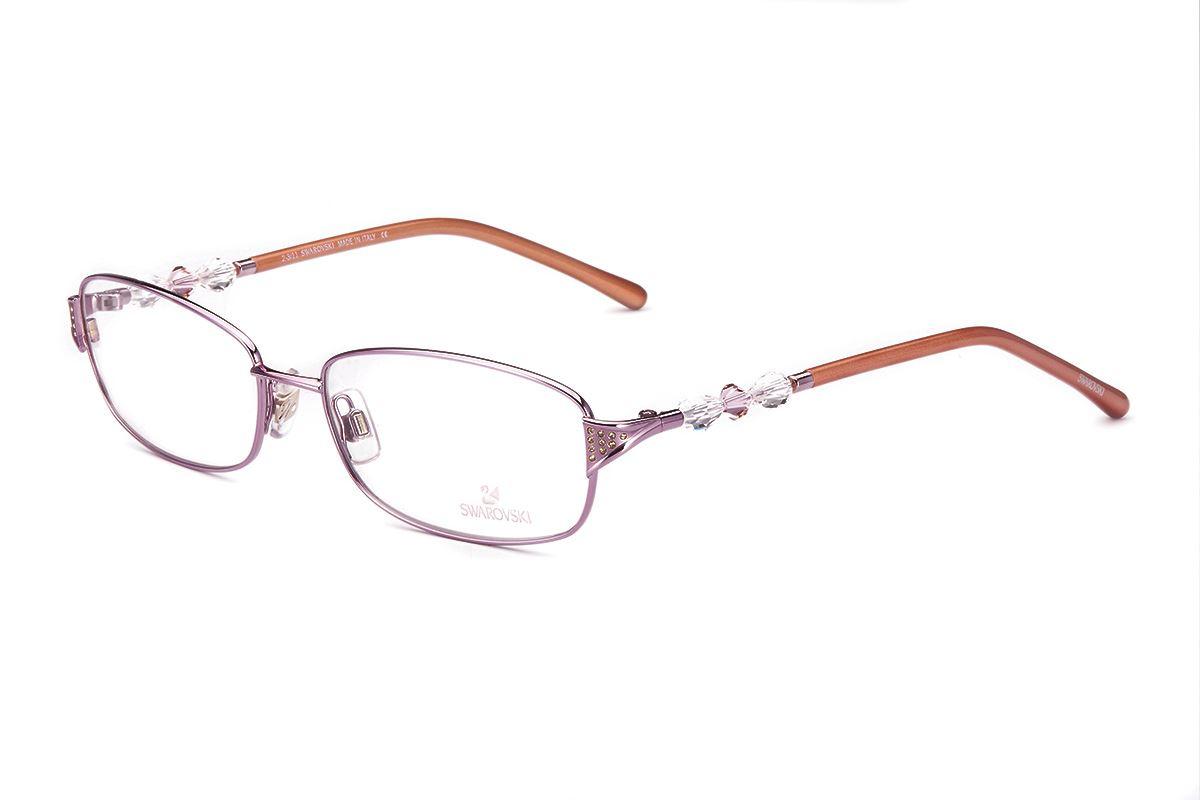 Swarovski 水晶眼镜框 SW5008-0721