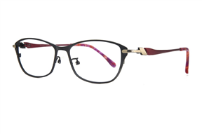 Glasses-Select 9050-C10