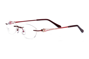 Glasses-FG Z6802-RE