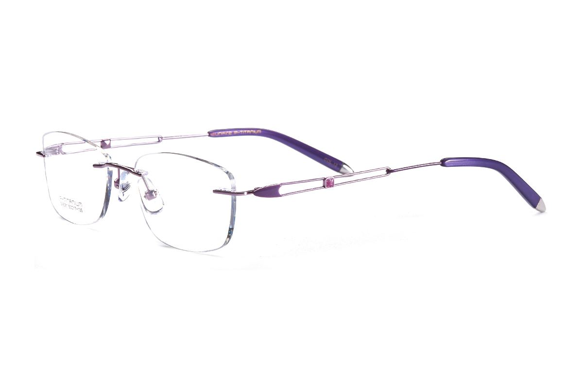 严选高质感钛镜框 FGS8361-PU1