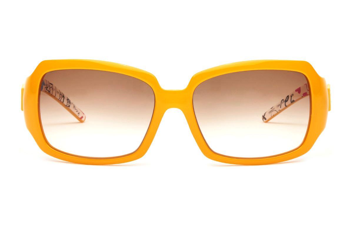 Fendi 高質感太陽眼鏡 FS507-YE2