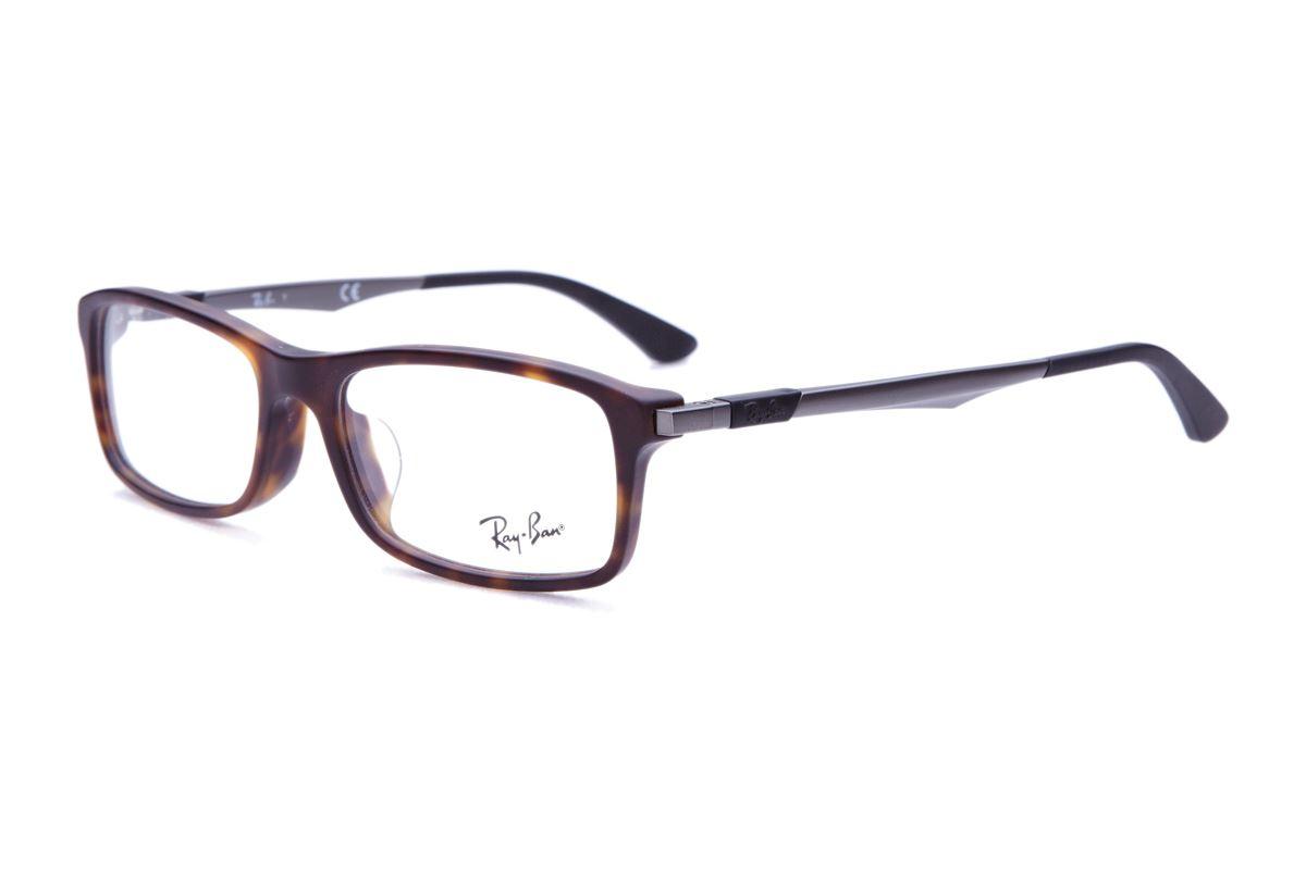 雷朋质感复合框(7017F黑纹框金属脚)1