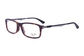 Glasses-RAY BAN 7017F