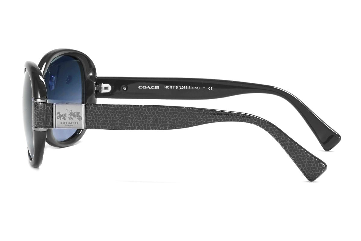 Coach 板料太陽眼鏡HC8115-BA3