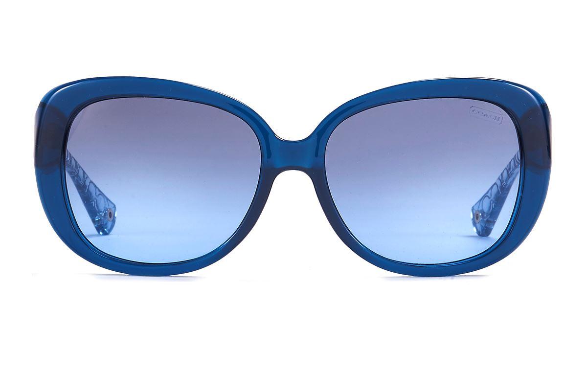 Coach 板料太阳眼镜 HC8076-BU2
