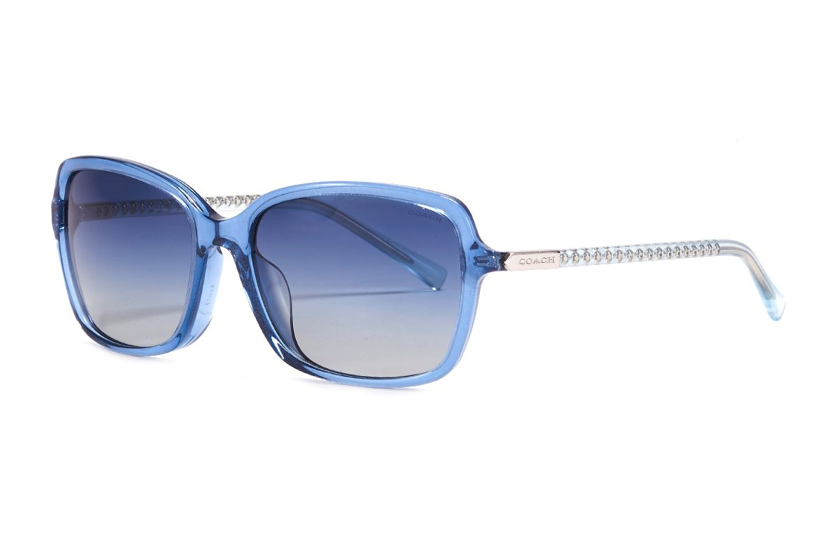 Coach 板料太阳眼镜 HC8152F-BU1