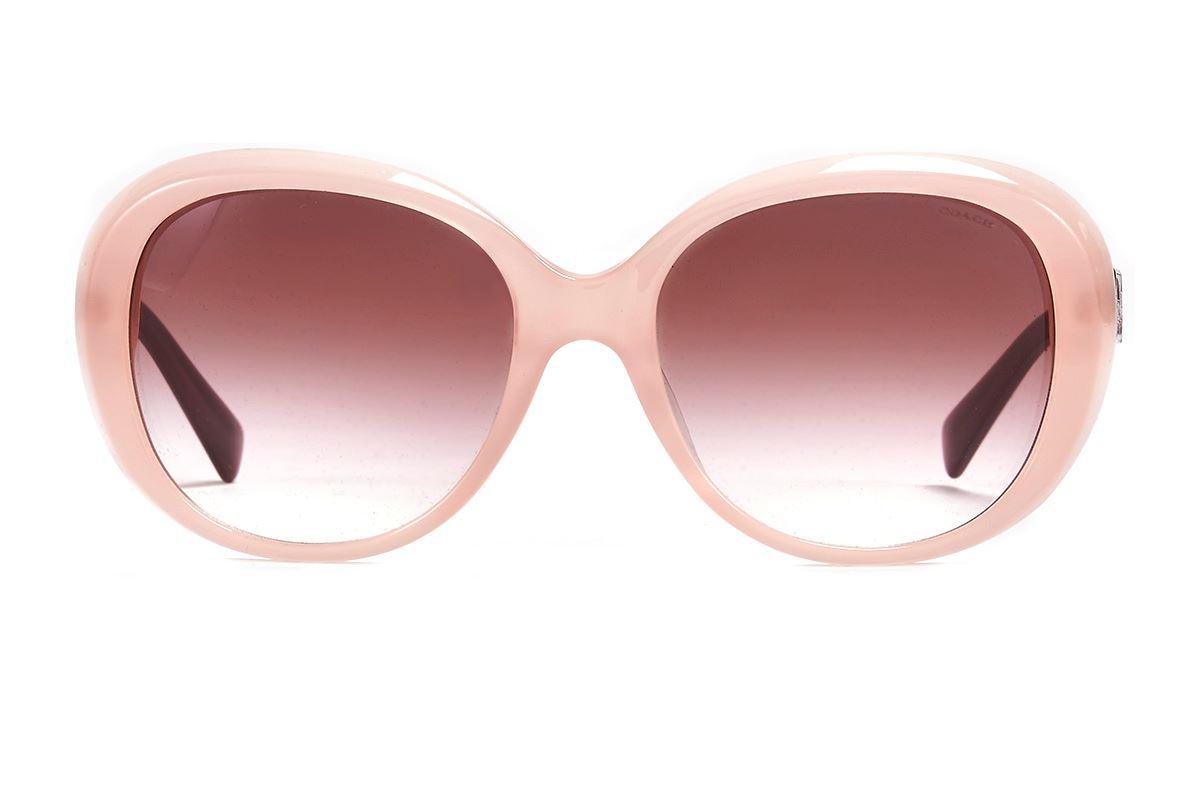 Coach 板料太阳眼镜 HC8120F-PI2