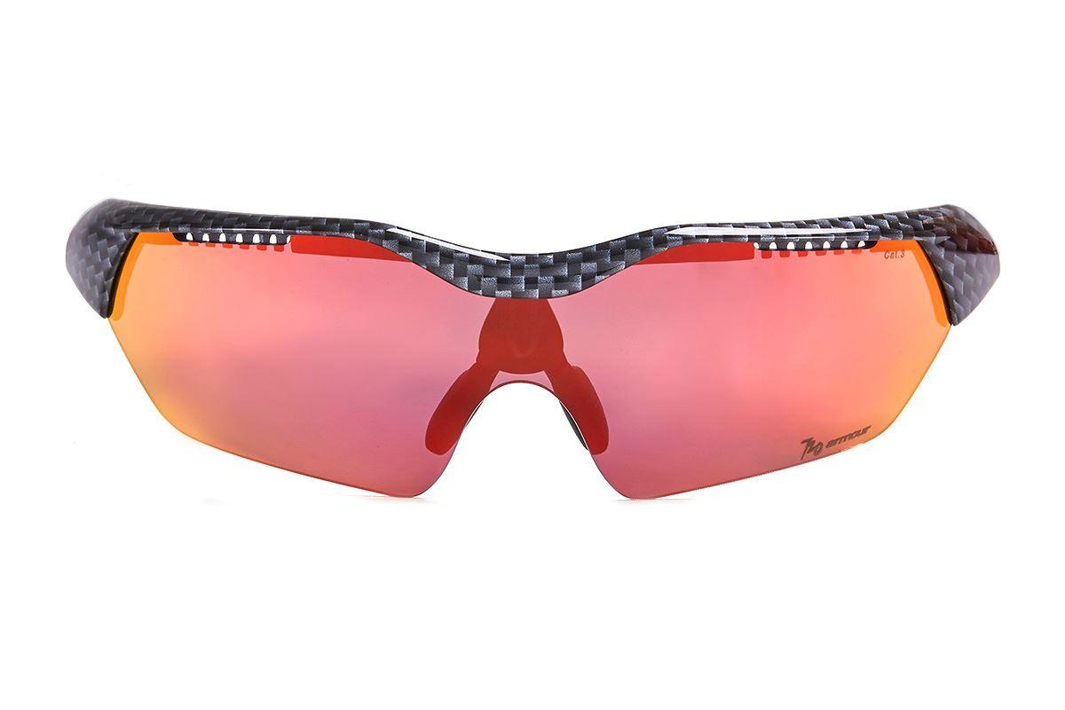 720 運動太陽眼鏡 T948B2-31-H2