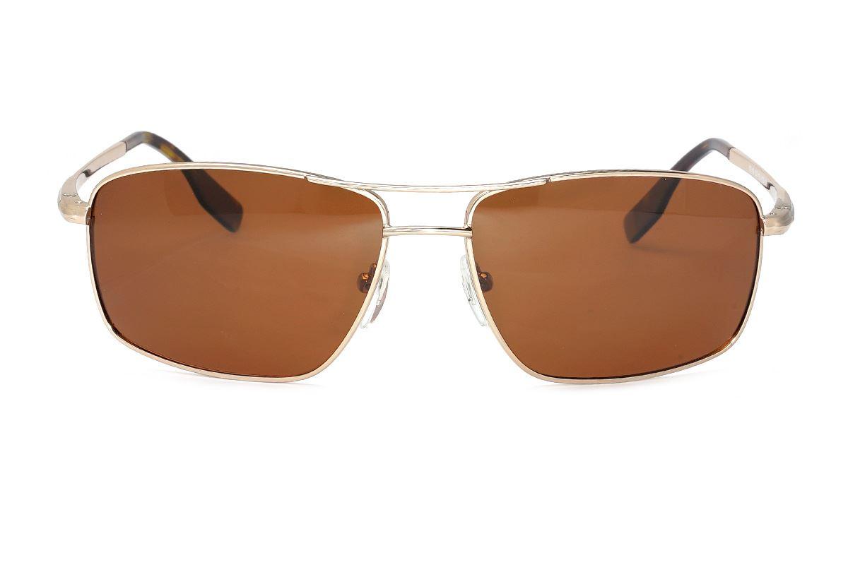 严选偏光太阳眼镜 F8049-GO2